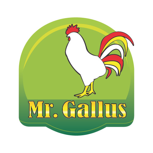 MR. GALLUS
